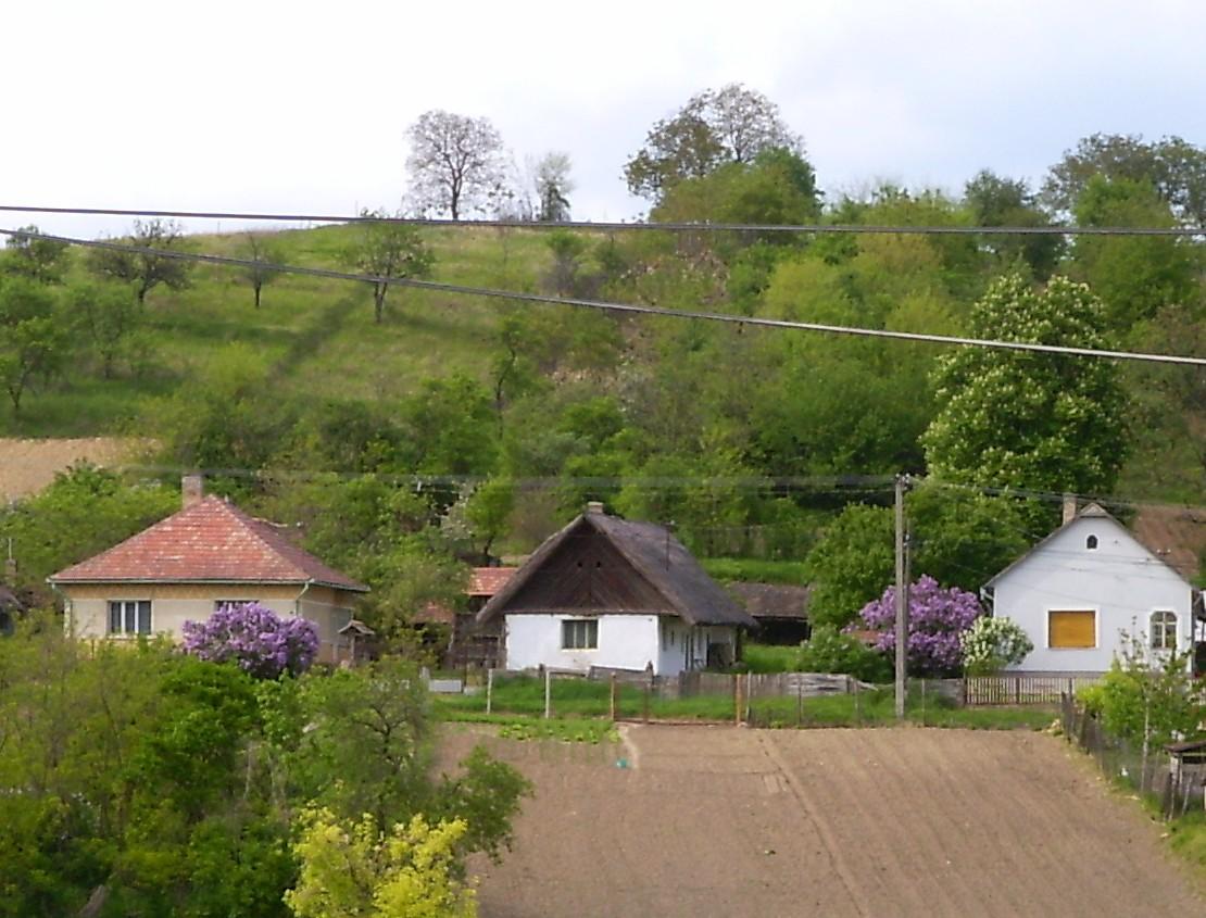 Kis-utca